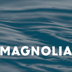 Magnolia Key Art