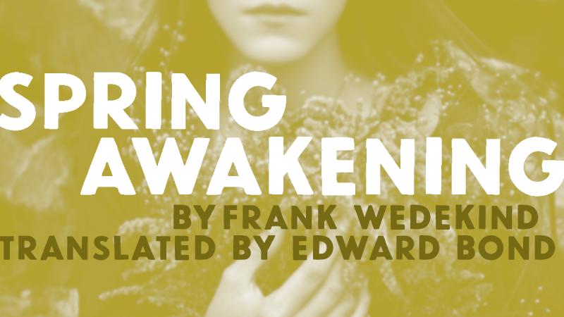 Spring Awakening artwork