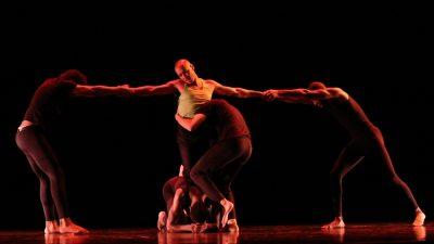 Rodin performance 2017